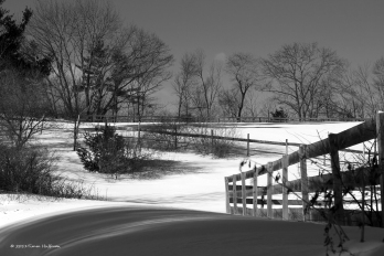When the temperature drops and the snow blankets the landscape, a heavy, comforting silence fills the air